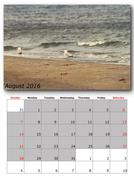 August calendar page with nature image Stock Illustration