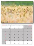 July calendar page with nature image Stock Illustration