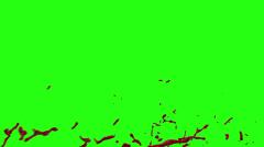 Hd Blood Burst Motion Blur (Green Screen) 169 Stock Footage