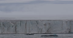 Sea Ice Floating at Base of Glacial Cliff Stock Footage