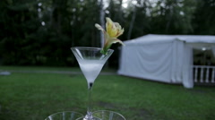 Glass with a drink on the nature close up Stock Footage