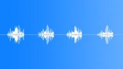 Eurasian Wren - sound effect