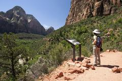 Stock Photo of Hiker looking at info board view towards Zion Canyon Emerald Pools Trail Zion