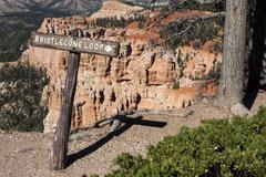 Stock Photo of Signpost Bristlecone Pine Loop Trail Bryce Canyon National Park Utah USA North