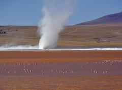 Stock Photo of Cyclone of borax sediment on a lake with flamingos Phoenicopterus sp in red