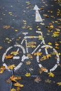 Designated cycle track rain slicked with autumn leaves Bamberg Upper Franconia Stock Photos