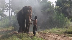 Mahout  with asian elephant Cambodia  Stock Footage
