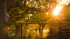 Sun Setting in Park Stock Footage