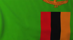 Flag of Zambia waving in the wind, seemless loop animation Stock Footage