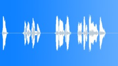 Gold (ATAS) H4 volume Sound Effect
