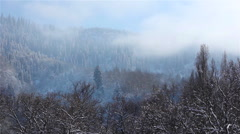 Fog over mountain's forest in winter time Stock Footage