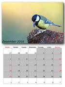 garden birds calendar  december , layout - stock illustration