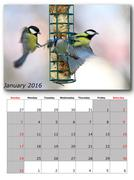 Stock Illustration of garden birds calendar january , layout