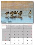 Stock Illustration of wildlife calendar february  print page layout