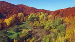 Aerial view of autumn colors Carpathians. - stock footage