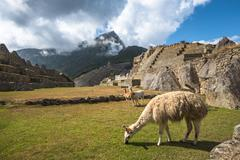 Machu Picchu, UNESCO World Heritage Site. One of the New Seven Wonders of the - stock photo