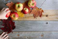 Habd if Child Grabbing Fruit from Photo Shoot Stock Photos