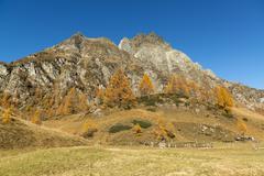 Autumn colors at the Devero Alp - stock photo