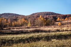Autumn in Carpathian Mountains Stock Photos