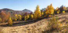 Autumn in Carpathian Mountains - stock photo
