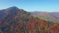 Aerial view of autumn colors Carpathians. - stock footage