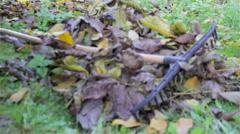 Rake the leaves Stock Footage