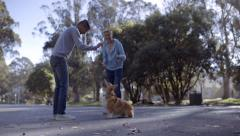 Owner Practices Tricks With His Dog, Gives Dog A Treat, His Boyfriend Watches Stock Footage
