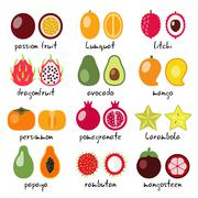 exotic fruits collection - stock illustration