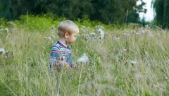 Happy Joyful Caucasian Cute baby boy toddler kid child is playing in a meadow Arkistovideo