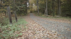 Spooky Dirt Road, Rural New England in Autumn, foliage Stock Footage