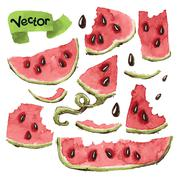 Watermelon Slices Set Stock Illustration