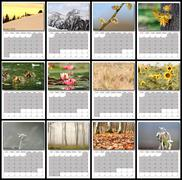 Nature images calendar year 2016 all months layout for print Stock Photos