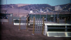 1966: Steeplechase horse jumping over gates and obstacles. Stock Footage