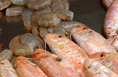 Mullet, perch and shrimps Stock Photos