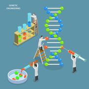 Genetic engineering isometric flat vector concept. - stock illustration