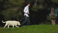 Young man walking with an old labrador dog in the park Stock Footage