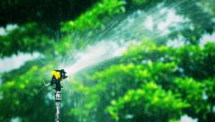 Automatic sprinkler watering in the park, Hong Kong. Stock Footage