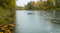 Stream in New England, peaceful river setting for fishing, gentle rain - stock footage