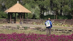 Chinese worker spraying pesticidesin the purple flowerfields - stock footage