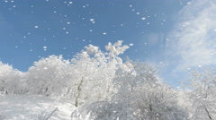 Sparkling winter wonderland with falling snow Stock Footage