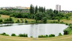 View of the small pond in the pure nature - tall building in the distance Stock Footage