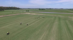 Argentina Polo match aerial drone scene. Stock Footage