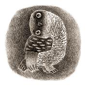 Black Banded Owl Sitting In a Hollow - stock illustration
