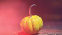 pumpkin outside halloween - stock footage