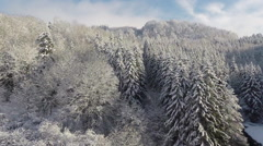 Crane shot of snow covered pine trees, Burg Hohenzollern, Baden-Wuerttemberg, - stock footage