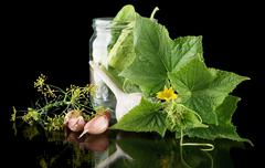 Cucumbers in jar preparate for preserving with flower bud,leaves,jar,garlic,d Stock Photos