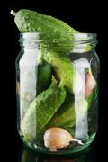 Cucumbers in jar preparate for pickling with leaves,jar,garlic,dill and tendr Stock Photos