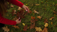 Woman gathering autumn fall leaves 4K. - stock footage