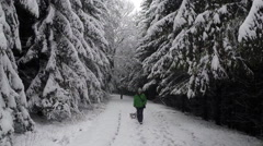 Dog following man with sled amidst snow covered forest, Stuttgart, Germany Stock Footage