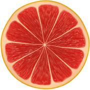 Slice of grapefruit isolated on white background Stock Illustration